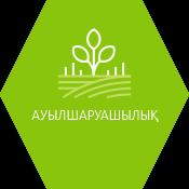 icon-image-48